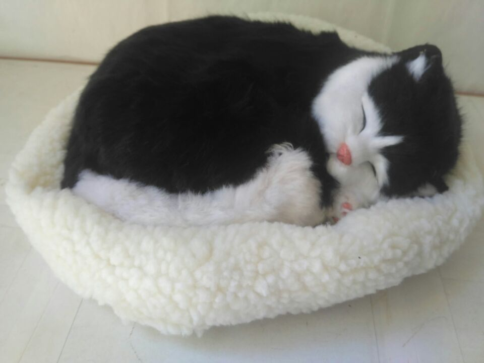 new simulation sleeping cat with mat model polyethylene&furs black&white cat about 27x17cm big sitting simulation white cat model plastic