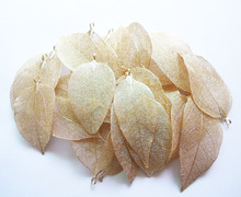 LOVBEAFAS Wholesale 50/lot Fashion Jewelry Gold And Silver Maxi Bijoux Natural Real Leaf DIY Necklace Pendant Women Accessories