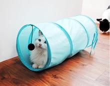 Super nice cat playing fun tunnel