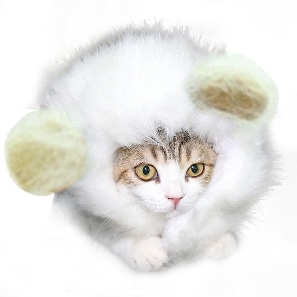 Modestil Haustier Hund Katze Emulation Löwe Haar Mähne Ears Kant Herbst Winter Dress Up Kopfbedeckungen Top Wassermelonen