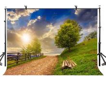 7x5ft Mountain Path Backdrop Nature Landscape Photography Background and Studio Props