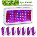 8pcs DIAMOND II 1200W Double Chips LED Grow Light Full Spectrum 410-730nm For Indoor Plants and Flower Phrase