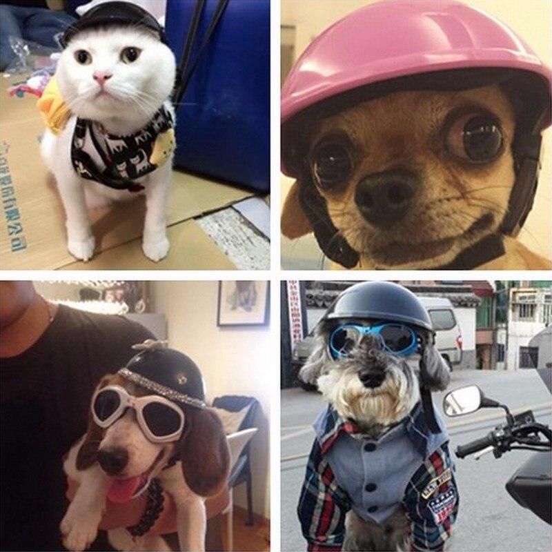 Animal De Compagnie Moto Casque Chapeau Chapeau Chien Chat Costume