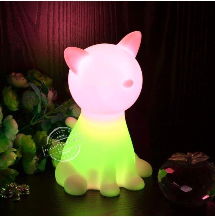 jouet chat nuit