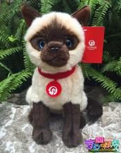 Genuine  Siamese Cat Doll  Plush Toy  Simulation  Stuffed Animals Toys  Children'S Gifts