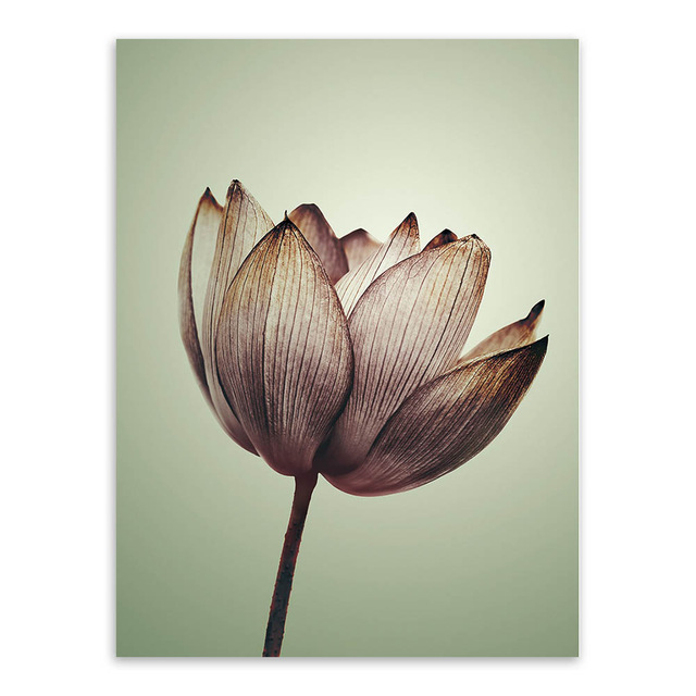 Triptych-Modern-Minimalist-Purple-Lotus-Rural-Floral-Cottage-A4-Art-Prints-Poster-Nature-Wall-Picture-Canvas.jpg_640x640 (1)