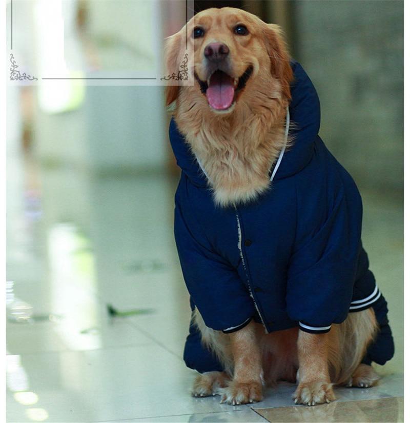 Warm dog clothes (9)