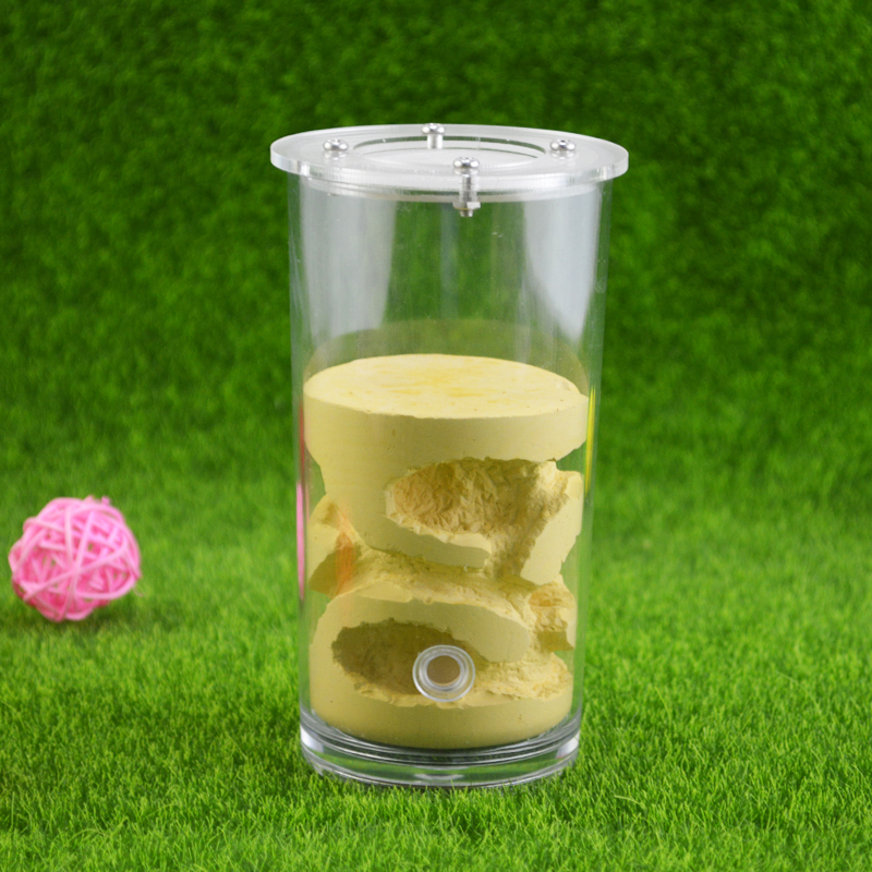 1PCS Ant Farm Water Cup Large Section Acrylic Gypsum Cup Ant Nest Acrylic Pet Ant Castle Workshop Home