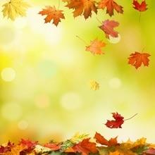 Laeacco Autumn Fallen Leaves Bokeh Scenery Portrait Baby Photography Backgrounds Custom Photographic Backdrops For Photo Studio цена