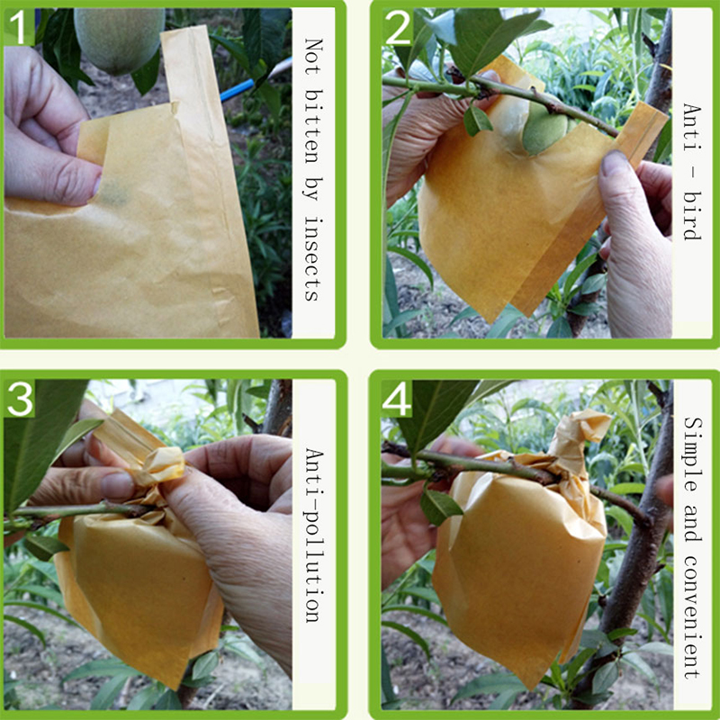 100pcs Fruit protection bag Wood pulp paper peach apple pear bagging Agriculture orchard Pest Control anti bird anti pollution in Repellents from Home Garden