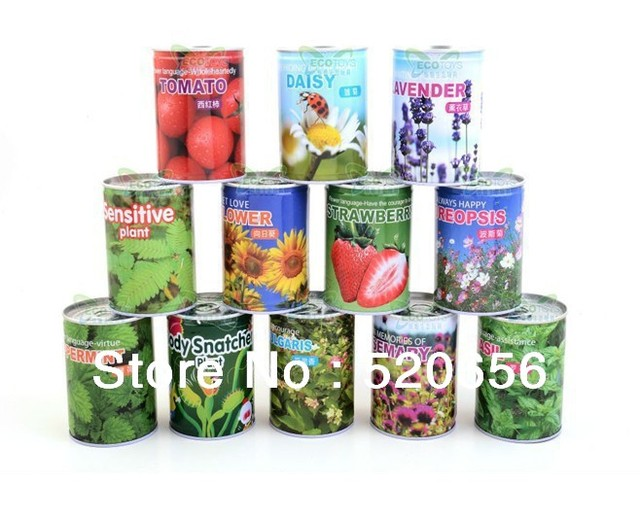 diy office gifts. Free Shipping Tin Can Plants Magic DIY Office Desk Decoration Home Plant Gifts 2 Diy D