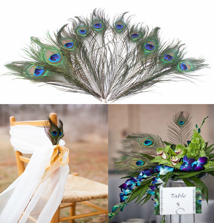 APRICOT 10pcs/lot Natural Peacock Feather Wedding