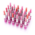 24Pcs/psck Waterproof Elegant Matte LipSticks12 Colors Long Lasting Lip Balms Sweet girl Lip Gloss Lipstick set