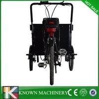 Современный дизайн и классический Максимальная скорость 25 км/ч 20x2.125 мотор колеса грузовой велосипед корзины улице велосипед бесплатно дос