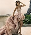 2017 Prom Dresses Organza Strapless Newest Short Front Long Back Wedding Party Dress Feather Lace Up Light Pink Evening Gowns