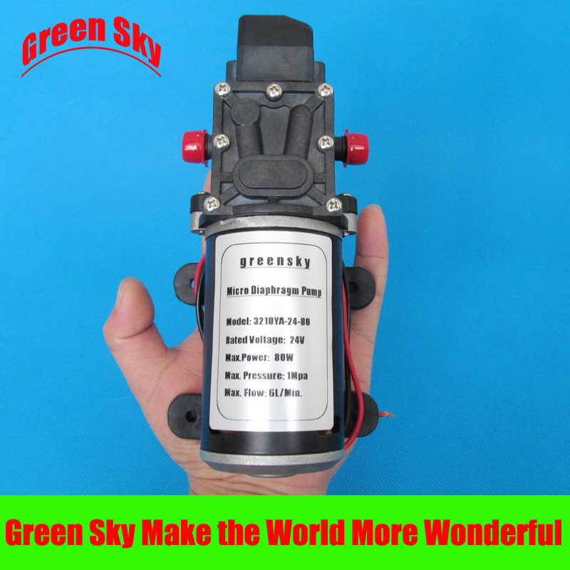 6L/Min 24V DC 80W sprayer,medical,chemical equipment,lawn and garden use high pressure water pump 1000ml chemical sprayer portable pressure garden spray bottle plant water