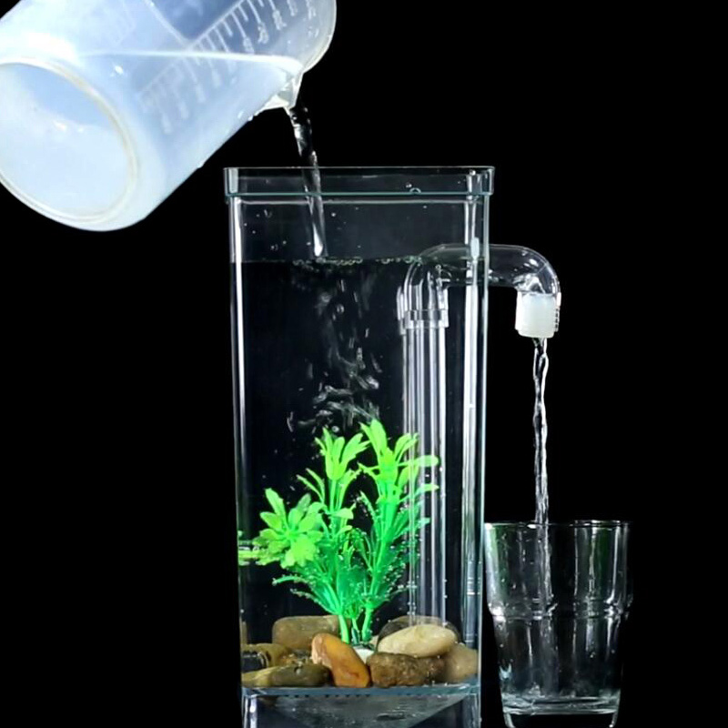 Small aquarium for Small betta fish tank