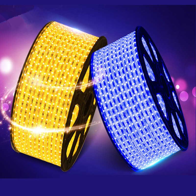 Горячая продажа светодиодный водонепроницаемый 5050 220 В гибкий свет 60 светодиодный/м, RGB, белый, теплый белый, синий, зеленый, красный, + штекер питания, бесплатная доставка