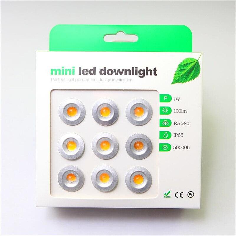 9pcs/lot DC12V 1W LED Mini Downlight Bridgelux Chip Waterproof IP65 LED Spot Light LED Cabinet Light New Design