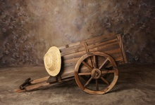Laeacco Photography Backgrounds Oil Paiting Old Wooden Wheel Carriage Flowers Baby Newborn Photo Backdrop Photocall Photo Studio