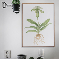 The Nepenthes Watercolor Painting Flower Piece Wall Art Canvas Prints Contemporary Paintings No Frame