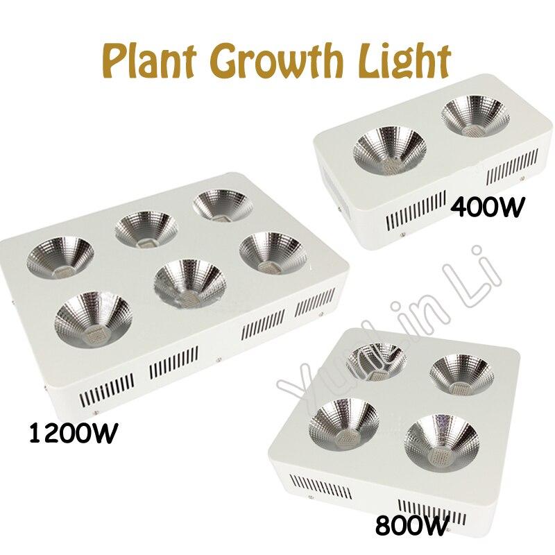 LED Plant Growing Light 400W/800W/1200W COB Plant Fill Light Full Spectrum Growing Light LZ125X growing up