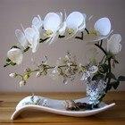 Butterfly Orchid Art...