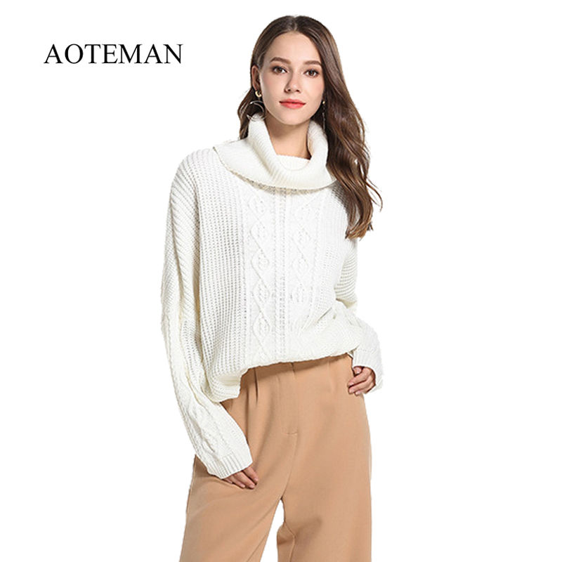 AOTEMAN Spring Winter Sweater Women Casual Solid Turtleneck Sweater Warm Oversize Long Sleeve Mini Knitted Sweater Plus Size 5XL
