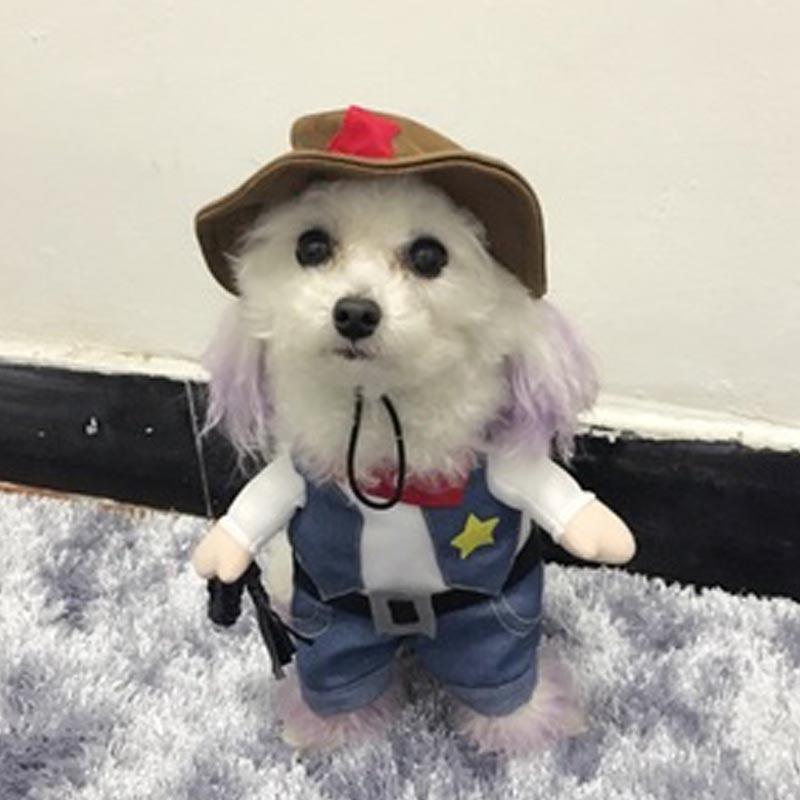⃝Funny Halloween mascota gato perro vaquero cosplay con el sombrero ...