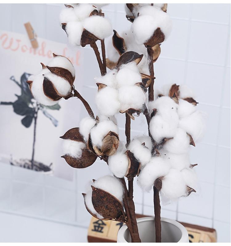 10 flores secas de algodón plantas artificiales con flores rama Floral para la decoración del Partido de la boda flores falsas decoración del hogar plantas de imitación Suculentas planta plantador resina de maceta de escritorio maceta titular hogar jardín decoración plantas titular