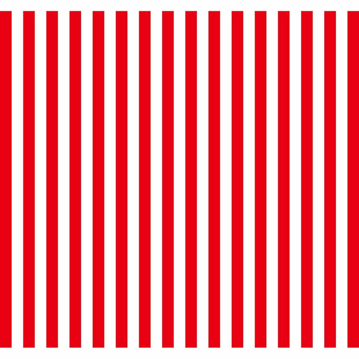 Allenjoy vinyl photographic background Red white stripes