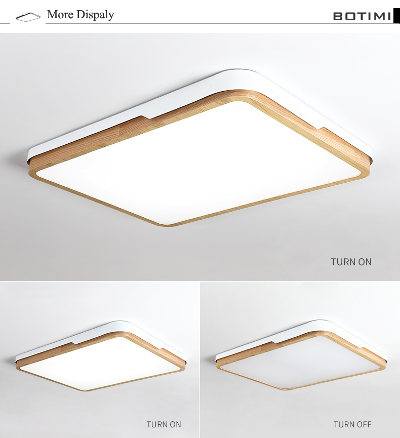 Ceiling-Light_04