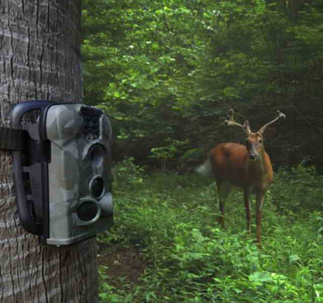 Free shipping hunting trail camera/3g gsm hunting scouting with high resolution outdoor animal monitoring