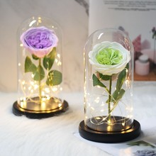 Rose Has Conducted The Light Of Beauty And The Beast Pink In Glass Dome For Valentine's Day Mother Christmas Gift Of Day