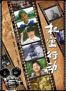 《机密行动》2007年中国剧情电影在线观看