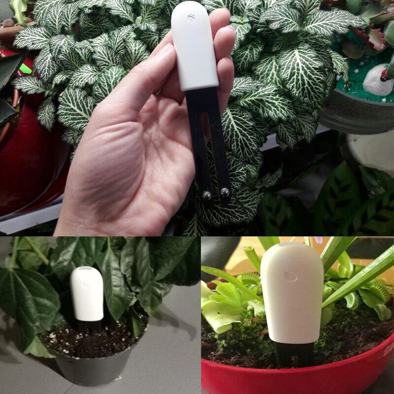Image 2 - Оригинальный международная версия Xiaomi Mi монитор, Флора цифровые растения травы цветок уход за грунтом тестер качества воды Сенсор детектор для растений-in Умный пульт управления from Бытовая электроника