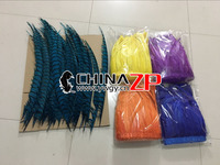 CHINAZP Carnival Costumes Samba Accessory Wholesale 14~16 inch Dyed Rooster Tail Feather Long Zebra Pheasant Free Express Way
