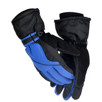 Dongzhen Motorcycle Gloves Ski Gloves Men S Warm Gloves Winter Sports Outdoor Gloves Motorcycle Blue Green