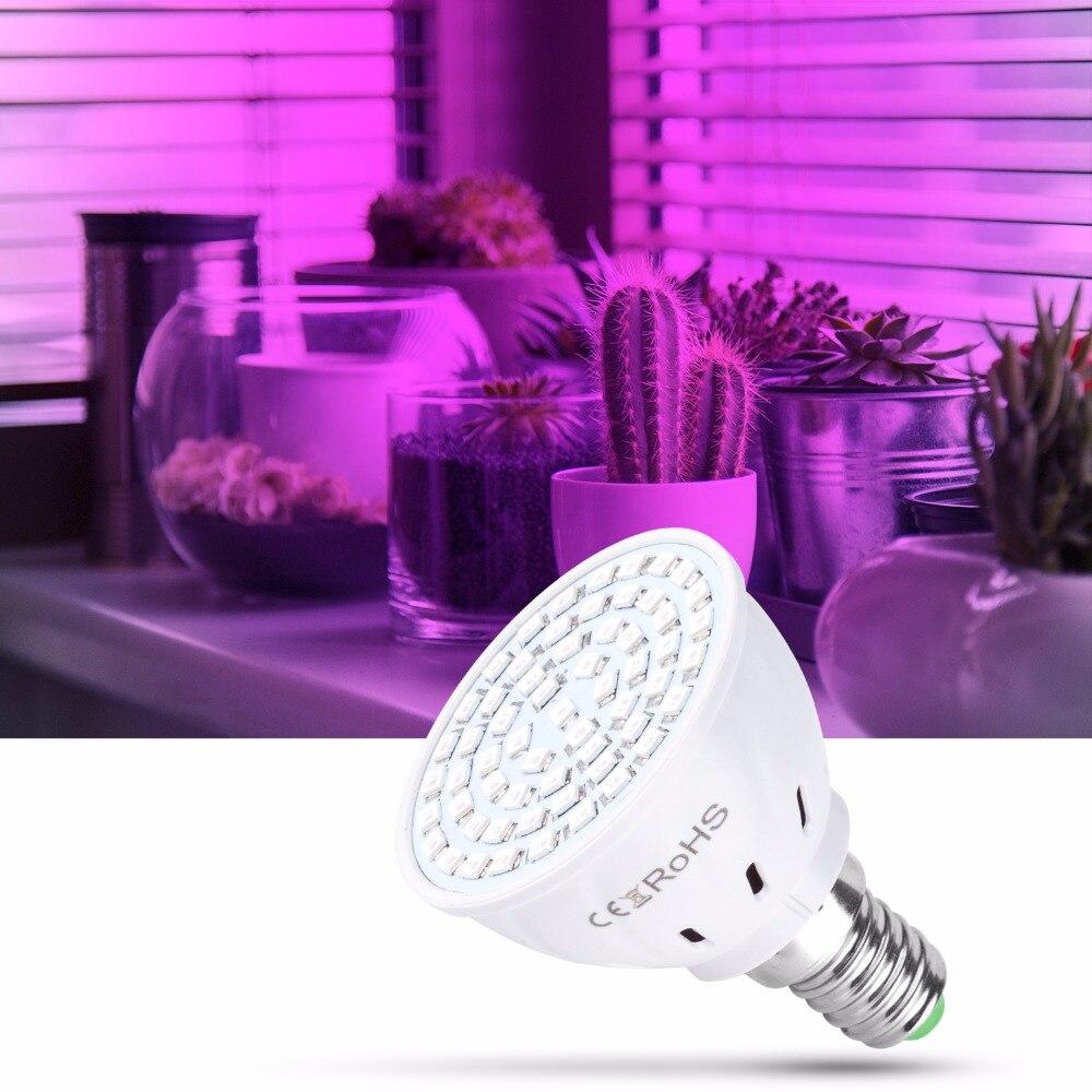Image 5 - AC220V E27 Phyto Lamps E14 Led Fitolampy GU10 Lamp For Plants B22 Full Spectrum Seedling Bulb MR16 Led Grow Light UV IR 4W 6W 8W-in Growing Lamps from Lights & Lighting
