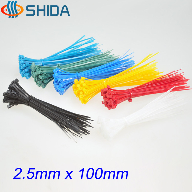 5fb32c1eb4f8 1000pcs 2.5*100mm Plastic Nylon Zip Ties, Colorful Wire Organizer Cable Ties  for Computer Wire Management