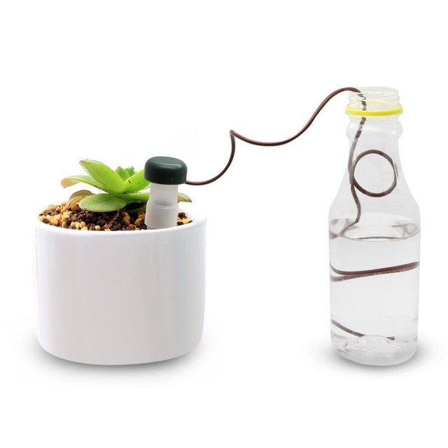 6 Pieces Self Watering Probes Indoor Automatic Watering System ... on diy automatic watering system, house plant palm tree, house plant watering devices, house plant water system, indoor house plant watering system, diy house plant watering system, house plants with red leaves, house plant automatic watering system,