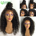 Kinky Curly Lace Front Wigs Human Hair Kinky Curly Wigs 20Inch Malaysian Human Hair Glueless Lace Wig For African Americans