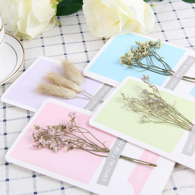 Remarkable 10Pcs Lot Diy Personalized Dried Flowers Handmade Greeting Cards Personalised Birthday Cards Paralily Jamesorg