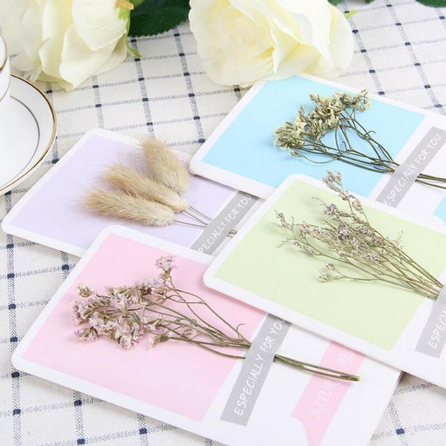 10pcs Lot DIY Personalized Dried Flowers Handmade Greeting Cards Lover Gift Card Happy Birthday Anniversary
