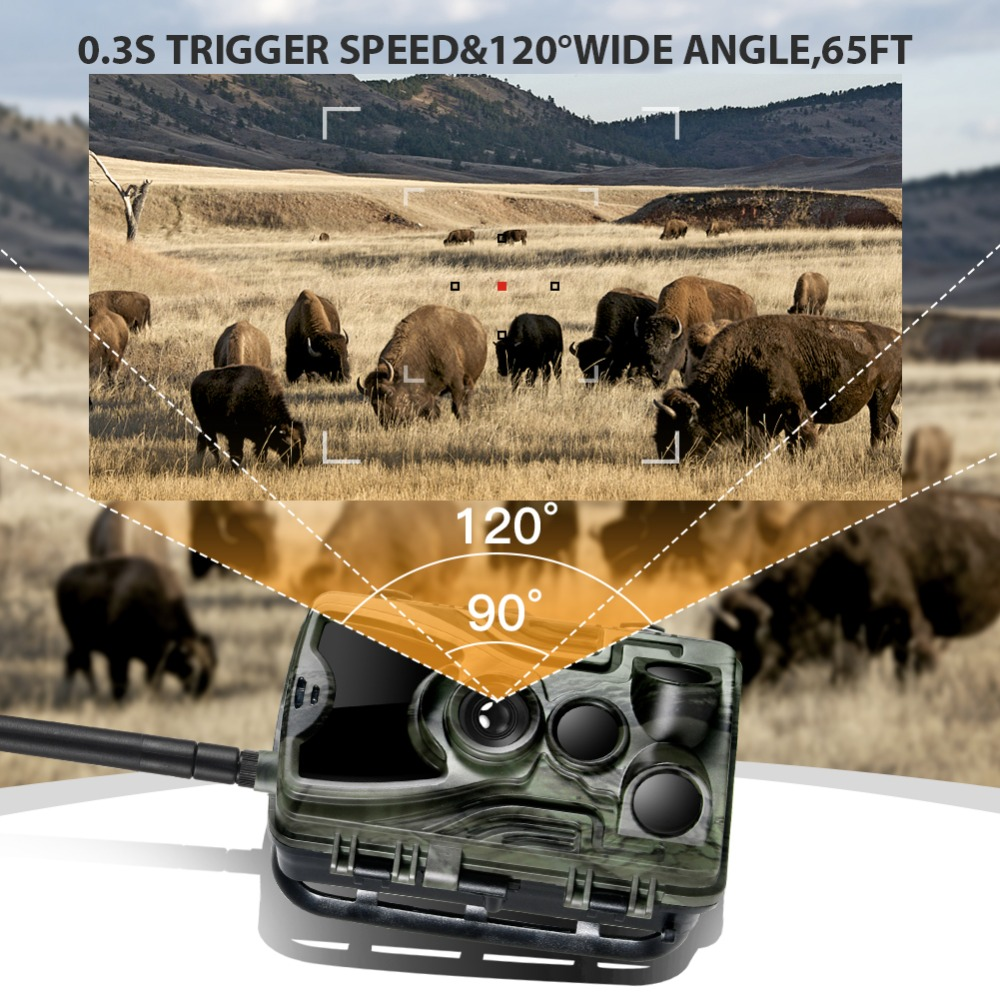 Image 4 - Suntekcam HC 801LTE 4G Hunting Camera 16MP 64GB Trail Camera IP65 Photo Traps 0.3s Wild Camera With 5000Mah Lithium Battery-in Hunting Cameras from Sports & Entertainment