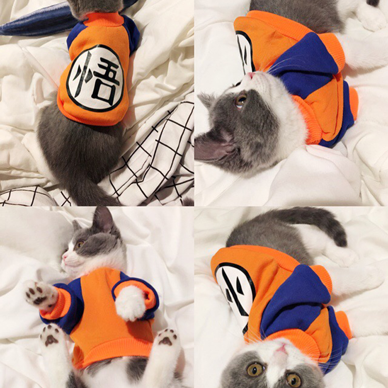 Cute Cat Clothes For Cats Autumn Winter Soft Warm Small Cats Dogs Sweater Coat Pet Apparel Xs-xxl