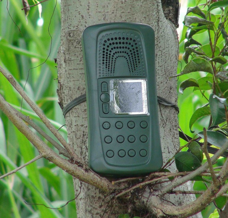 ФОТО remote control bird caller with timer