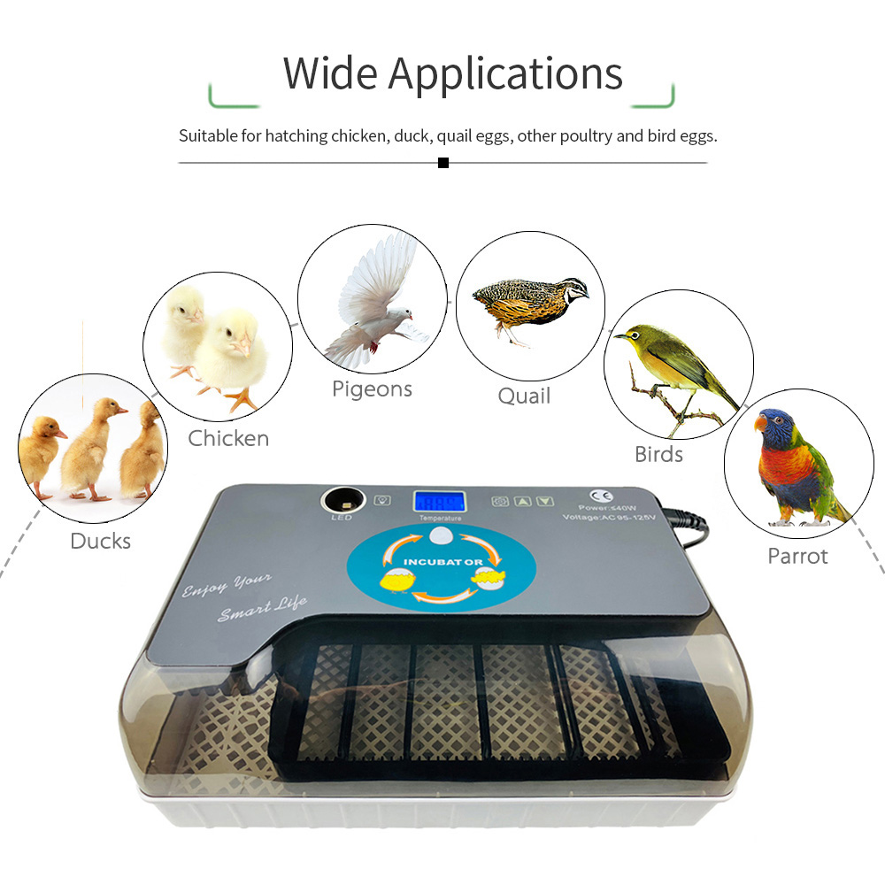 Digital Egg Incubator Machine Automatic Eggs Hatcher with Eggtester Automatic Egg Turning 12 Eggs Poultry Hatcher
