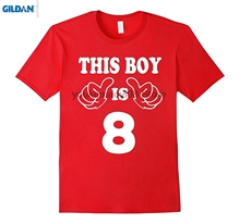 GILDAN 100 Cotton O Neck Custom Printed T Shirt 8 Year Old For Boy Kid 8th Birthday Gift Idea 2009