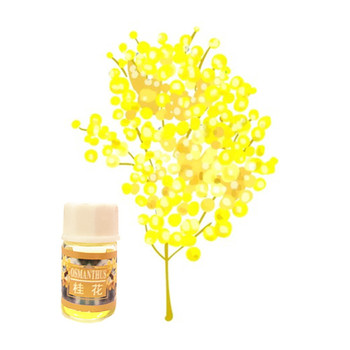 Pure natural plant extraction Essential Oil for Face Care Skin Anti-scar repair Fast effect Essential Oil